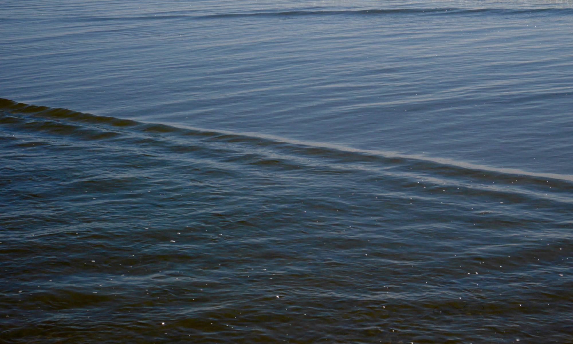 Sea Flow Yoga